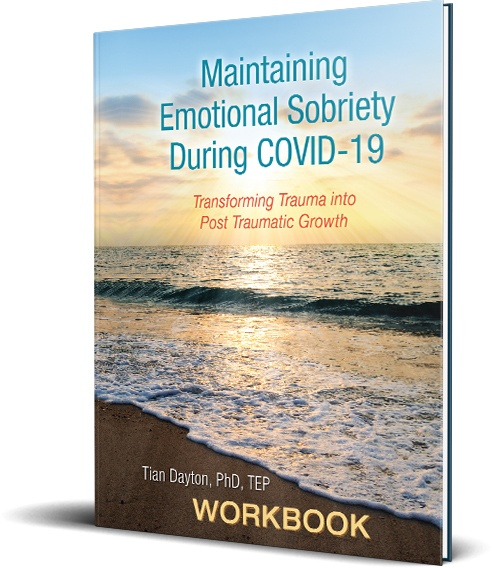 Maintaining Emotional Sobriety During Covid-19 book cover